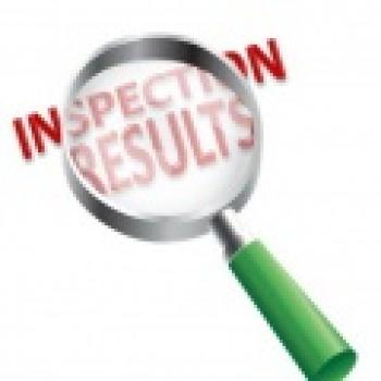 Inspection Results