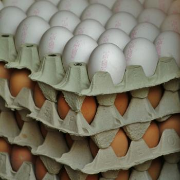 Cartons of white and brown eggs stacked on top of each other