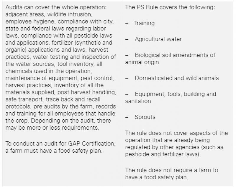 PS Rules page 2