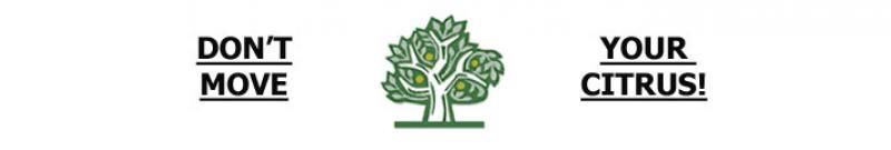 Don't move your citrus graphic showing a citrus tree
