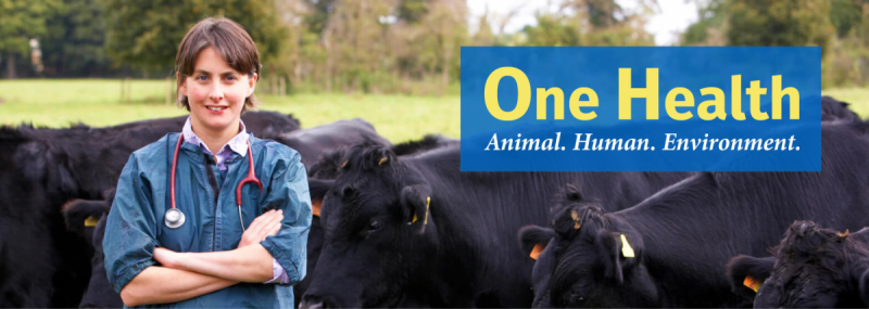 One Health. Animal. Human, Environment.