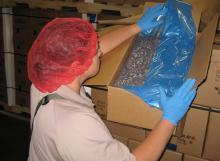 export certification, plants, nuts, pecans, arizona, agriculture, international