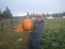 Arizona Agriculture, Mark Killian, pumpkin