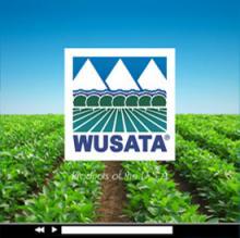 WUSATA Logo